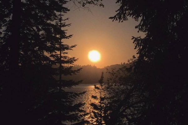 sunset on the lake through the trees in Lake Arrowhead