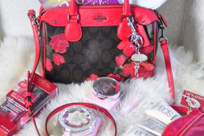 Valentines' Day Giveaway! Coach Logo+Roses Bag + More!