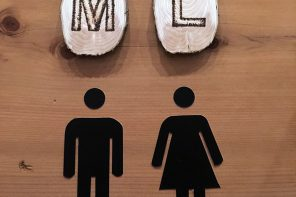 DIY Restroom Signs ~ Woodsy Discs & Modern Decals