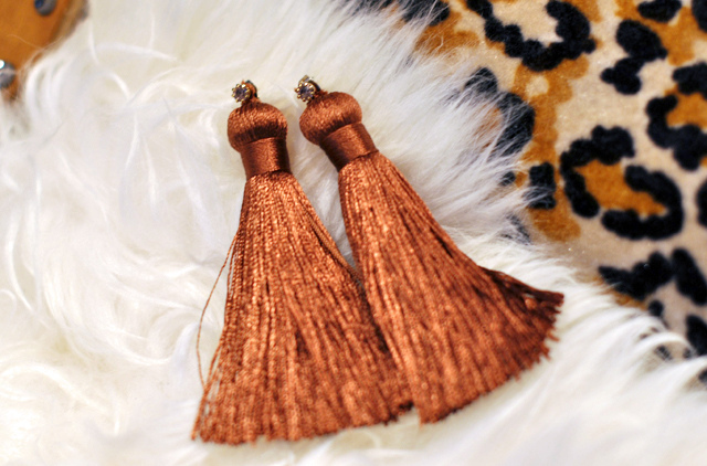 DIY Pretty Tassel Earrings