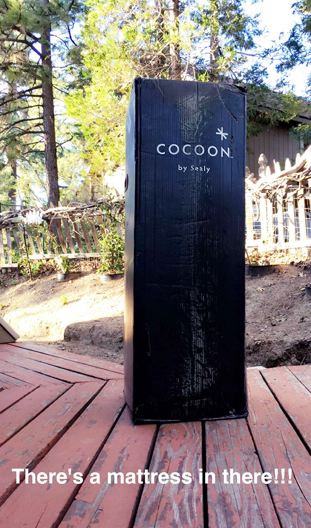 Cocoon mattress in a box by Sealy