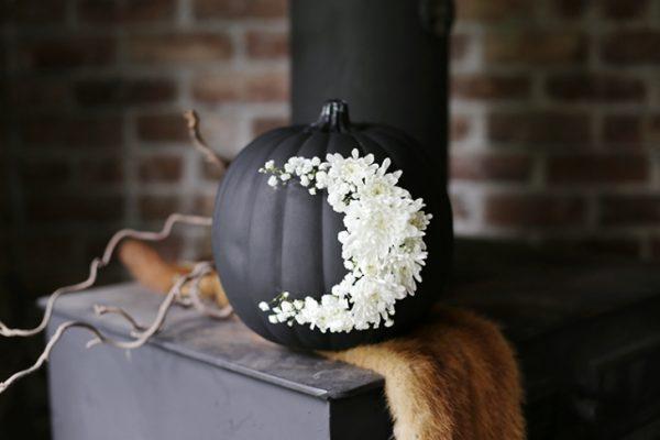 floralpumpkin4pp_w730_h486