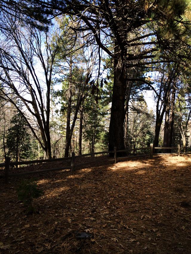 Heaps Peak Lake Arrowhead-8
