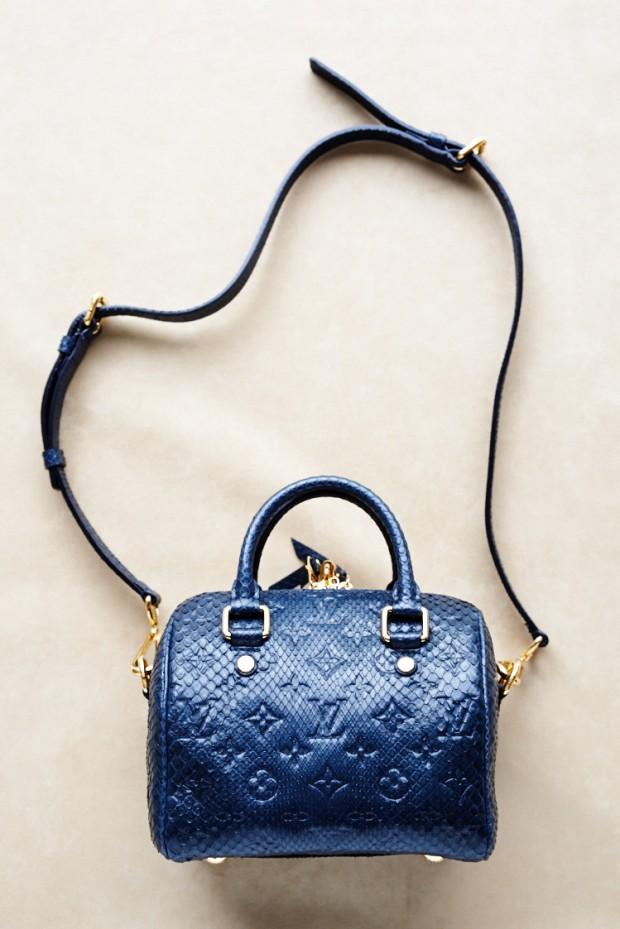 Louis Vuitton Speedy -blue