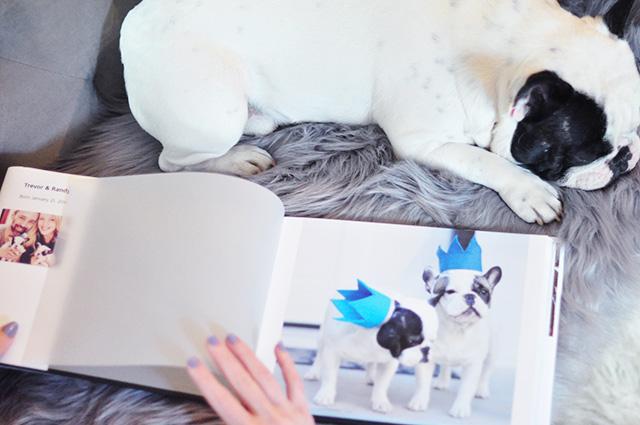 My Publisher_Custom photo book-1