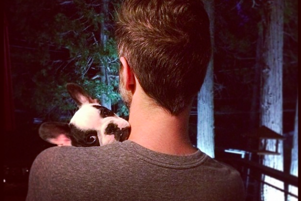 cute puppy over shoulder