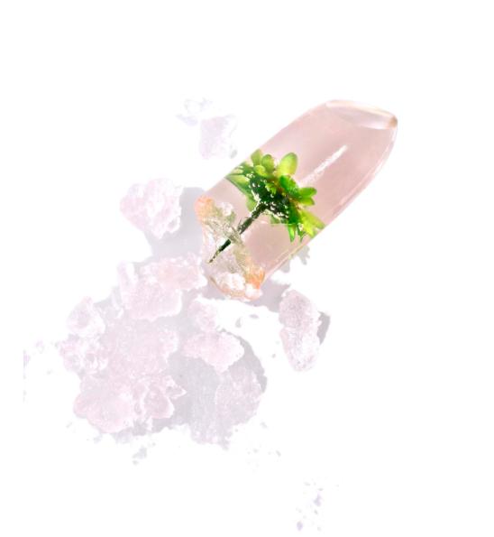 Winky Lux Flower Lip Balm // #WLFlowerBalm