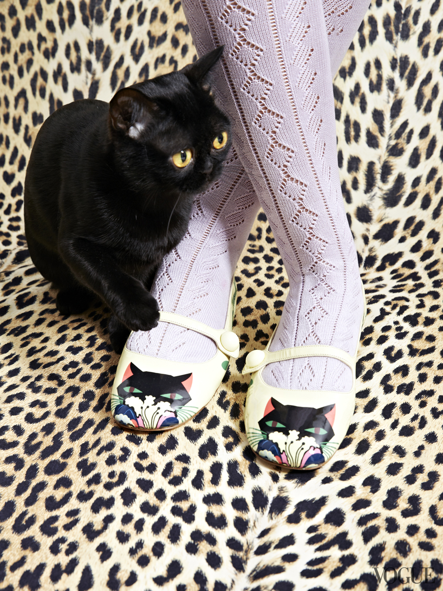 cats-kittens-flats-shoes-14_161859525237