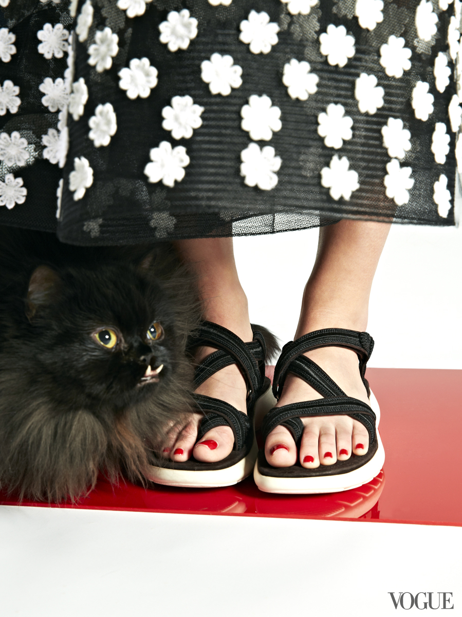 cats-kittens-flats-shoes-16_161901740188
