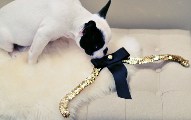 diy sequin bow hanger with puppy