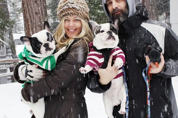 family snow shot + french bulldogs
