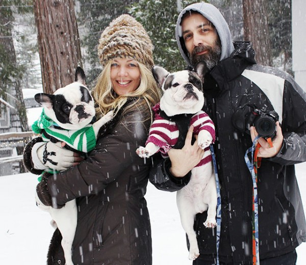 family snow shot + french bulldogs