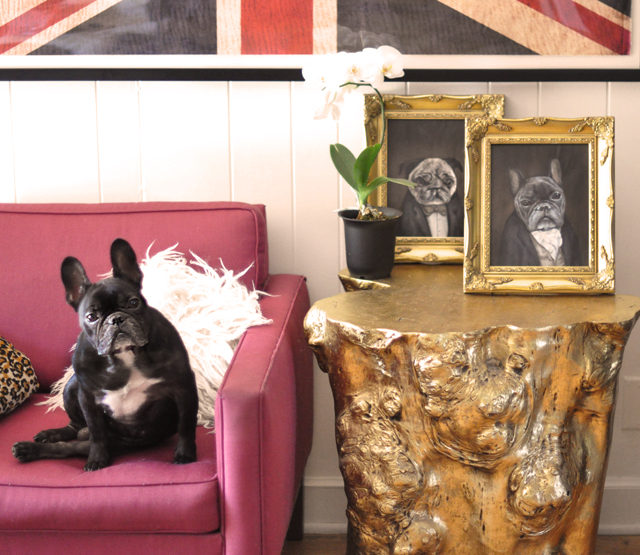frenchie+and+pug+dog+portraits++-+gold+table