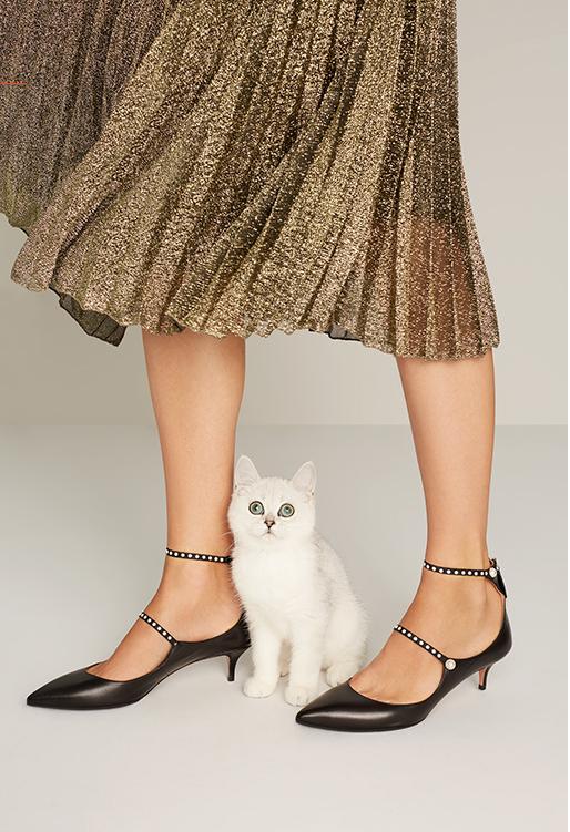 kittens-and-kitten-heels
