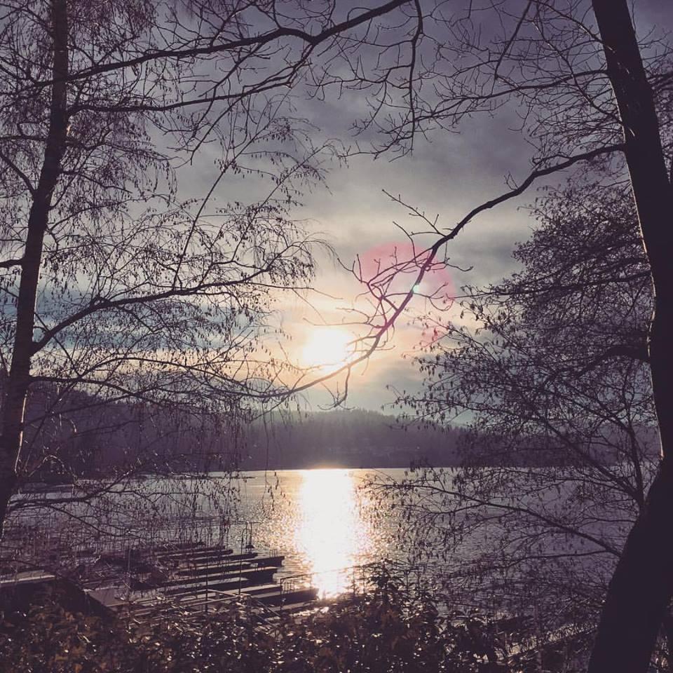 lake arrowhead sunset through the trees