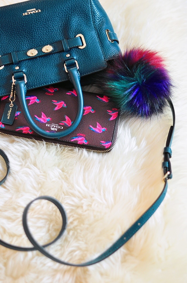 mini-coach-bag-and-wallet-with-bird-print