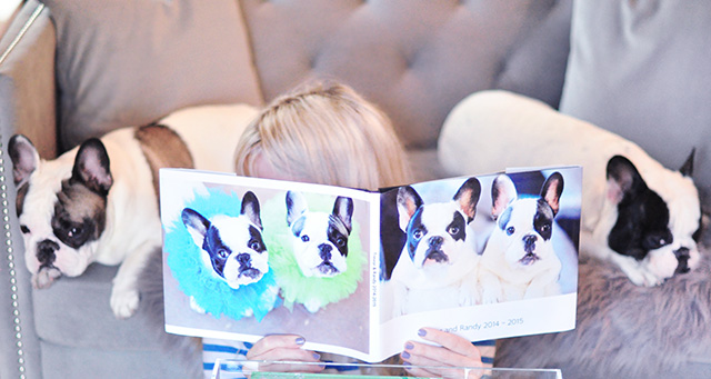reading to my dogs
