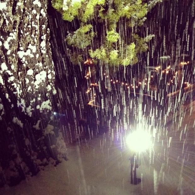 snowfall in the light
