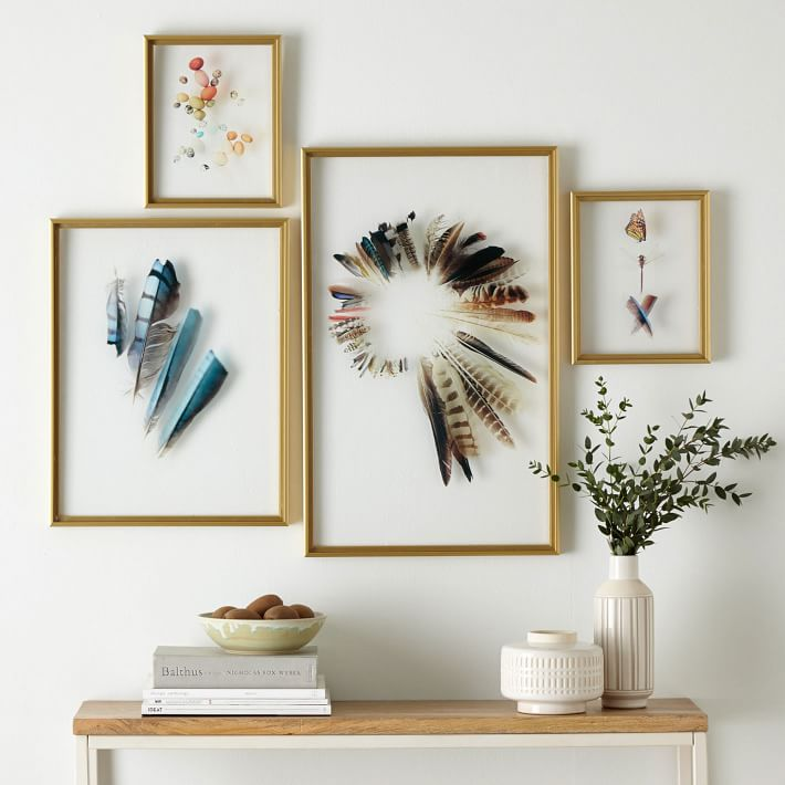 Framed floating botanicals feathers diy inspo for Acrylic wall art