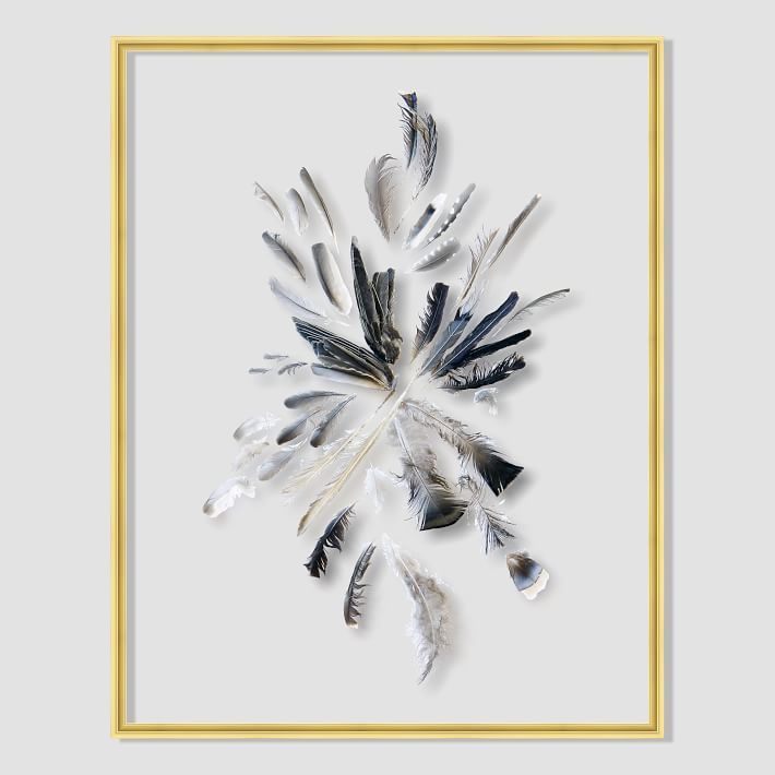 still-acrylic-wall-art-feathers-o