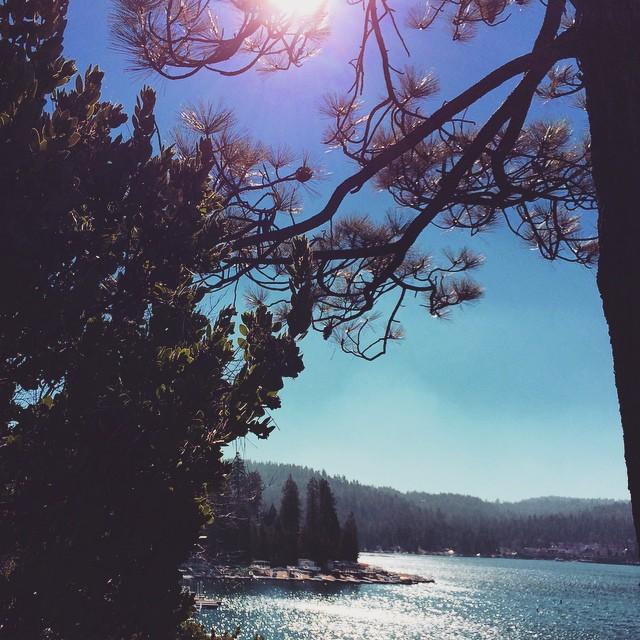 sun through the trees over the lake