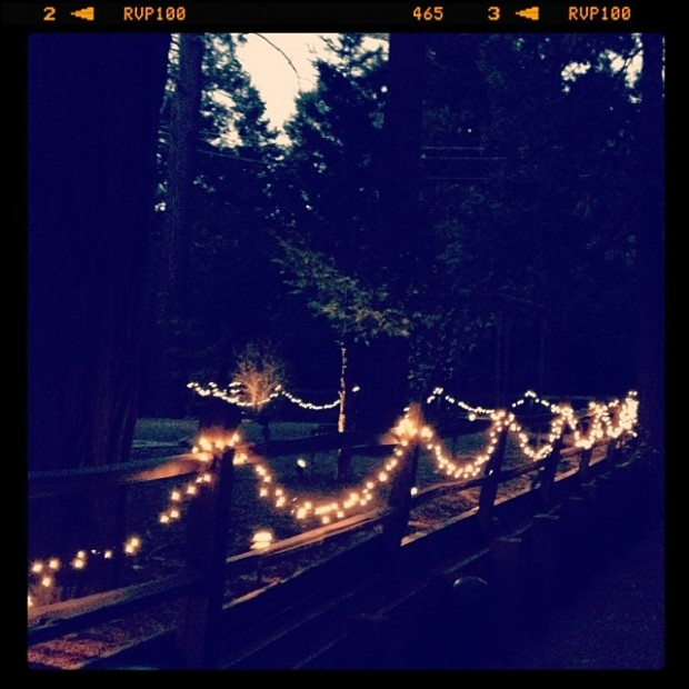 white lights on fence